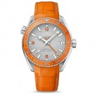 Fake Omega Seamaster Planet Ocean 600 M Omega Co-axial GMT 43.5 mm 232.93.44.22.99.001
